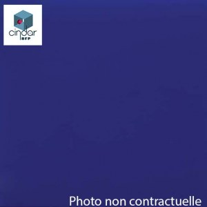 Échantillon Bleu Transparent - 3mm - Altuglas® 10013000
