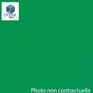 PMMA Coulé Vert Transparent coloré Altuglas ® 100 14000 - 3 mm - Prix au m²