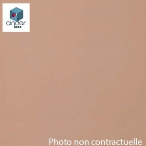 Échantillon Fumé Bronze Clair Transparent - 3mm - Altuglas® 10016036