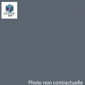 PMMA Coulé Gris Altuglas ® 100 48007 - 3 mm - Prix au m²