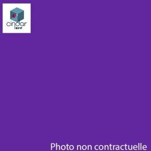 Échantillon Violet Diffusant - 3mm - Setacryl® 2239